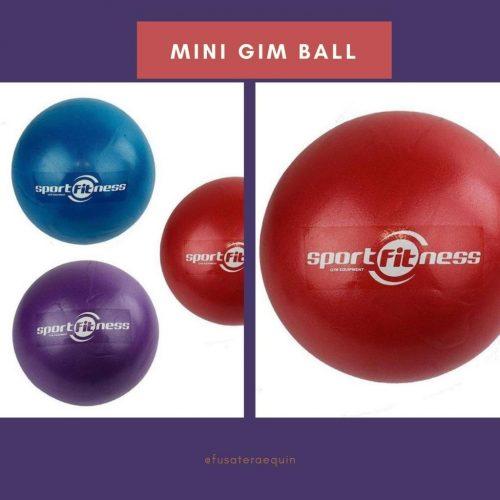 Mini gim ball
